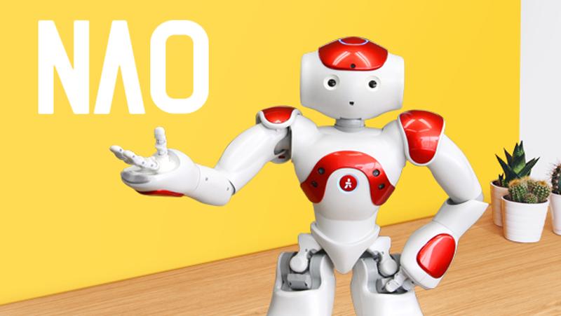 二足歩行型ヒューマノイドロボット「NAO」 | 株式会社ROOM810